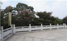 常熟花岗岩芝麻白石材雕刻栏杆 厂家特价定制(优质)